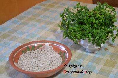 kurinii-sup-s-beloi-fasoliu