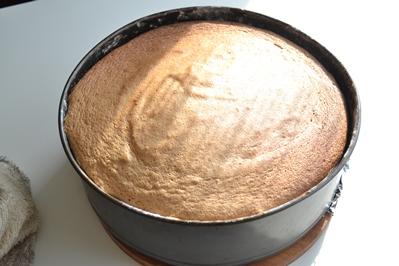 Бисквит в форме для выпекания
