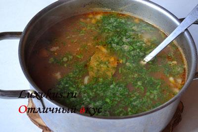 Кастрюля супа харчо