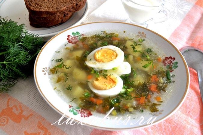куриный суп со щавелем фото